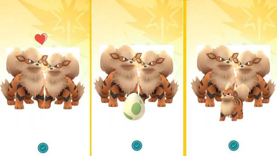pokemon go nachwuchs